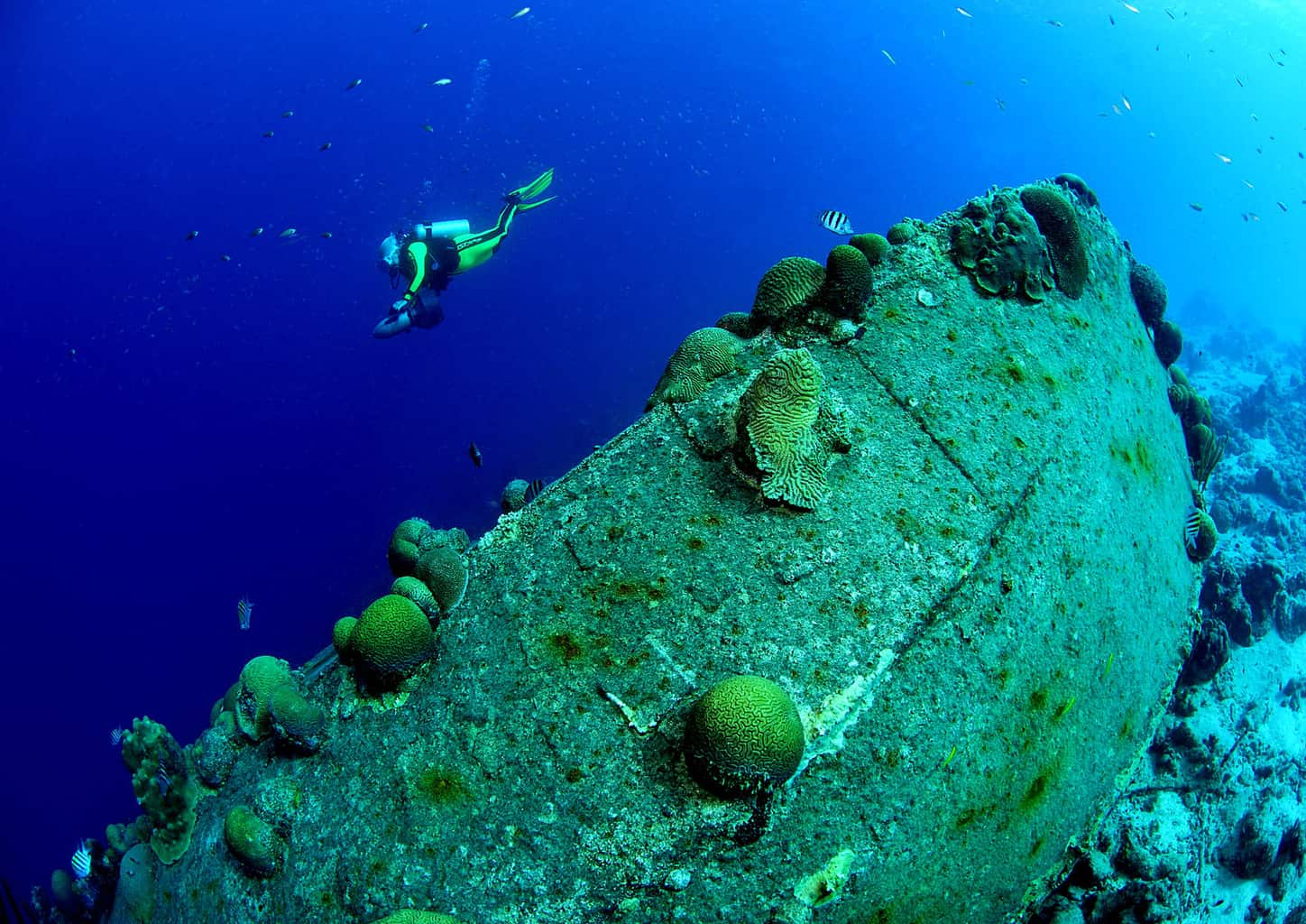 Bonaire Diving holiday Diver With Wreck