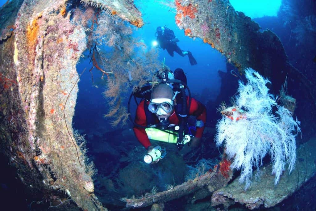 Grenada Diving holidays – 2 Divers and reef