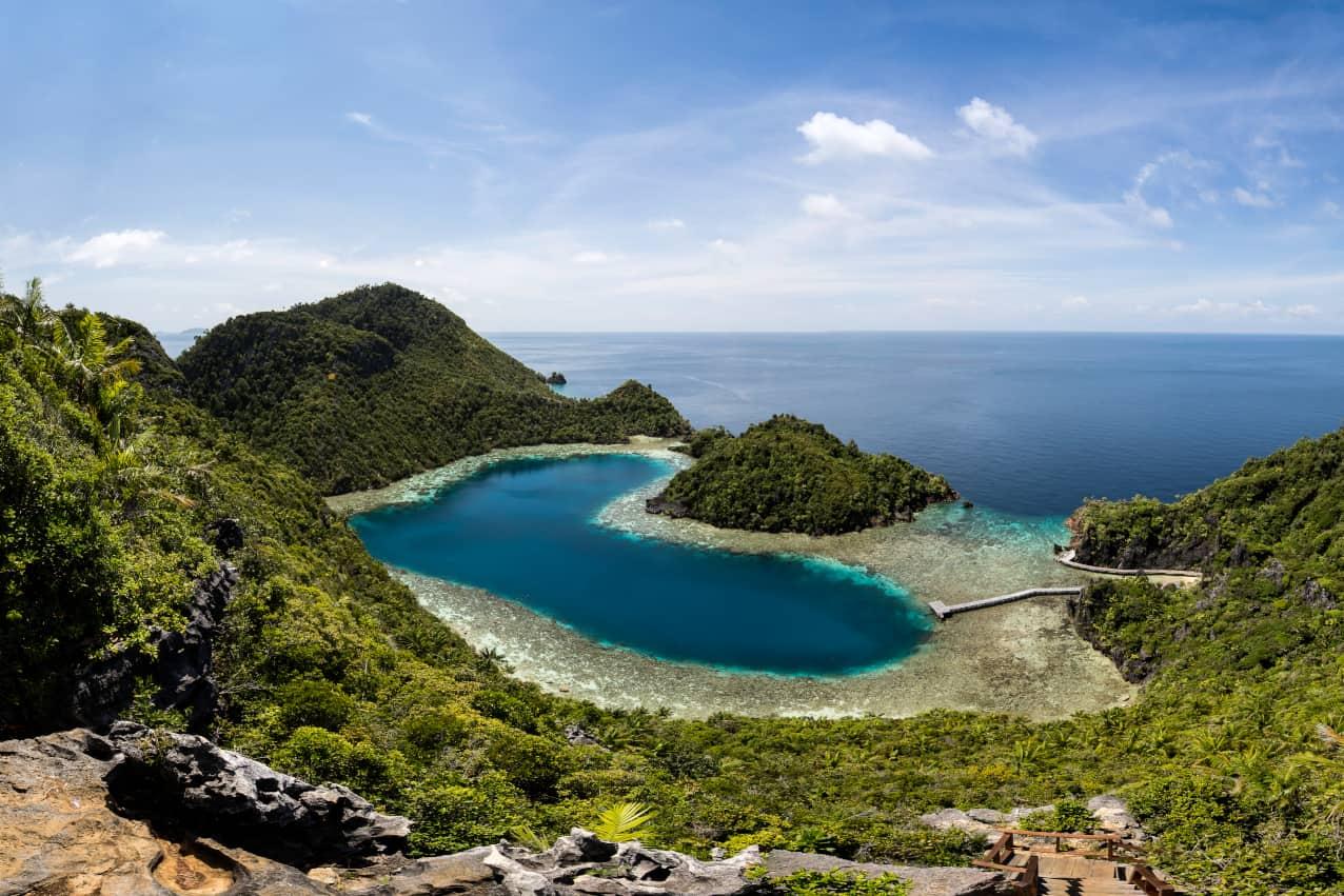Indonesia liveaboard Diving holidays Coralia Liveaboard Teluk Cinta