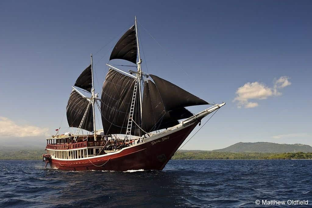 Indonesia liveaboard Diving holidays Seven Seas