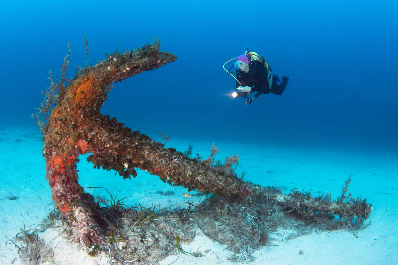 Malta and Gozo Diving holidays Diver and anchor