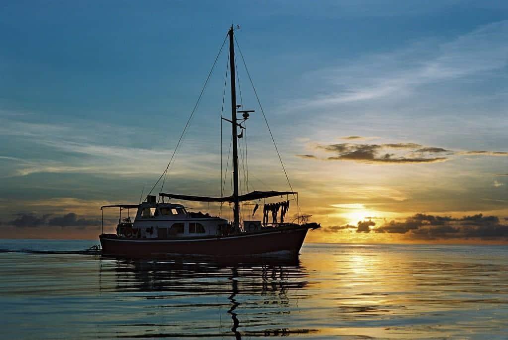 Palau Liveaboard Diving holiday Ocean Hunter 1