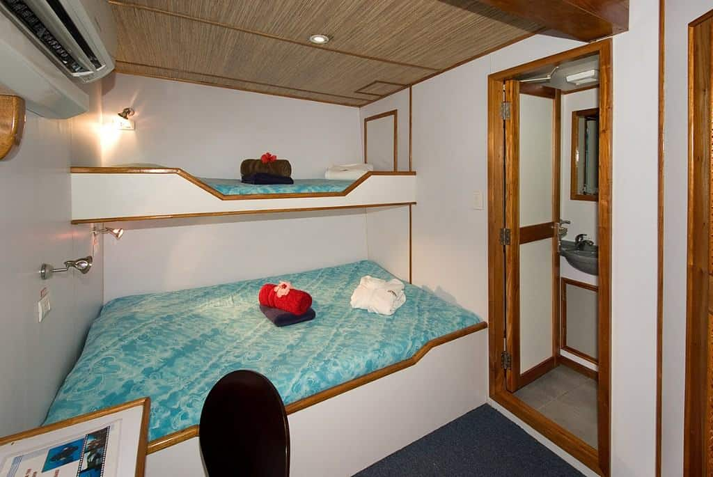 Palau Liveaboard Diving holiday Ocean Hunter 3 Deluxe Cabins