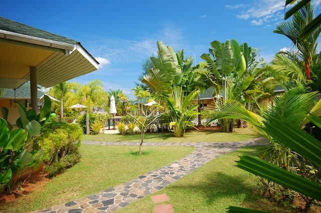 Thailand Diving Holidays Khao Lak Palm Garden