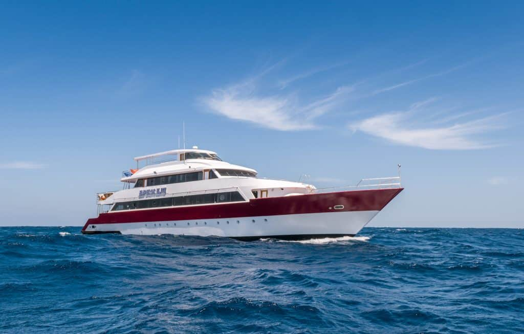 Red Sea Liveaboards Emperor Elite Exterior