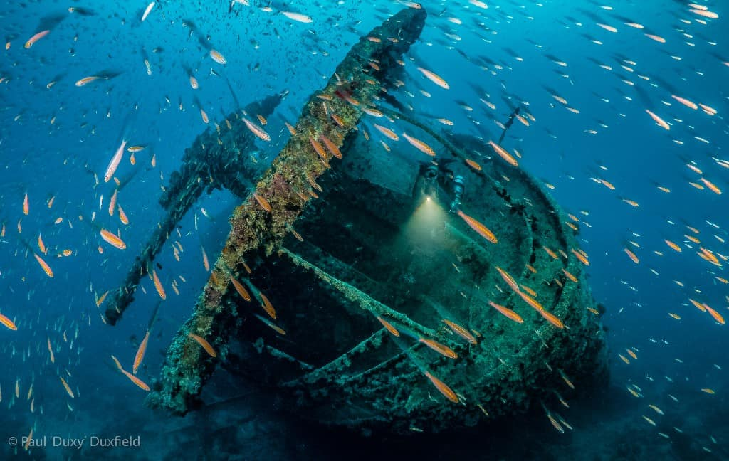Duxy Red Sea
