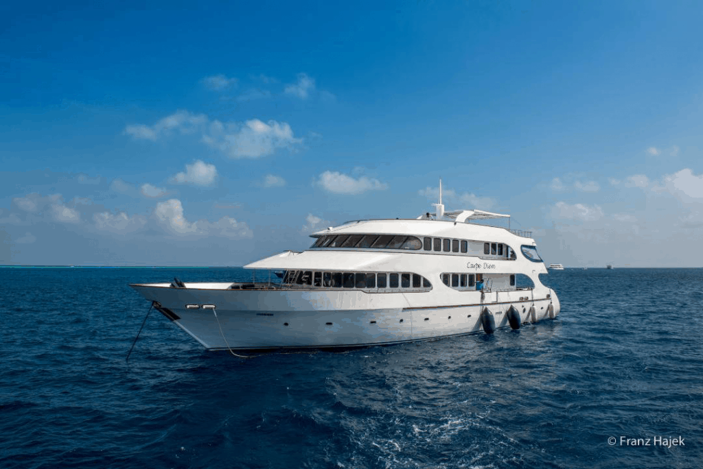 Maldives Liveaboard Holidays Carpe Diem